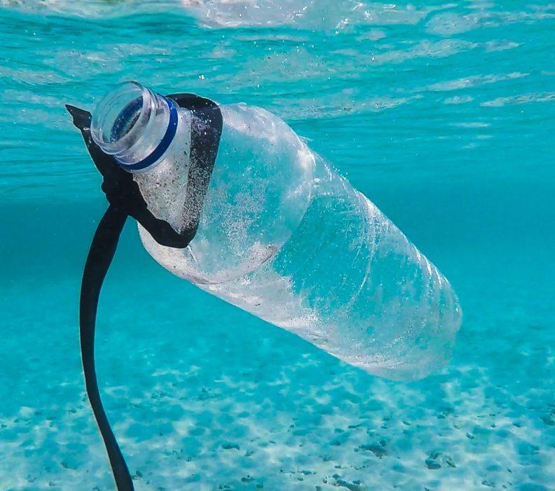 Poluição da Água: como evitar a poluição nos mares?